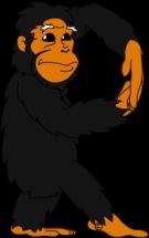 Chimpanese [Converted] R