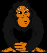 Chimpanese [Converted]O